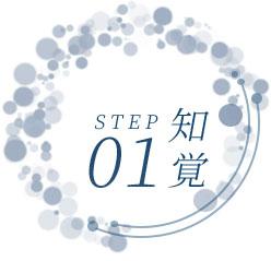 ステップ1:知覚
